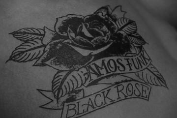 """עמוס פאנק – """"black rose"""""""