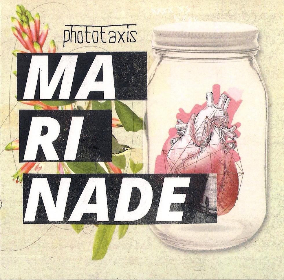 """""""MARINADE"""" – פוטוטקסיס"""
